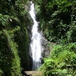 Die wunderschönen Concord Falls an der Westküste von Grenada