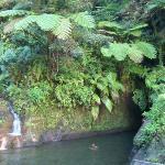 Bericht von unseren Erfahrungen am Ti Tou Gorge in Dominica