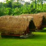 Bewertung über meinen Aufenthalt im Hotel Botopassie am Suriname River