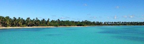 Erfahrungen über den Ausflug zur Isla Saona in der Dominikanischen Republik