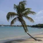 Ein paar Impressionen von der Halbinsel Lance aux Epines bei St. George's im Süden Grenadas