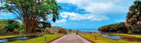 Erfahrungsbericht und Reisebericht über die Karibik-Insel Martinique