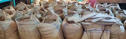 Erfahrungen über unseren Besuch in der Grenada Nutmeg Factory