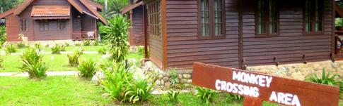 Mein Bericht und Hotelbewertung über das Mutiara Taman Negara Resort in Malaysia
