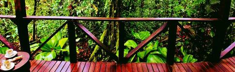 Hotelbewertung über die tolle Eco-Lodge in Costa Rica, das Rio Celeste Hideaway Hotel