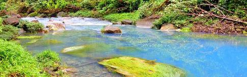 Der Rio Celeste im Tenorio National Park in Costa Rica