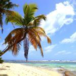 Bericht über unseren Ausflug per Boot nach Sandy Island
