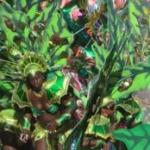Bericht, Erfahrungen und Bilder zum Karneval in Grenada