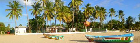 Reisebericht über das beeindruckende Sri Lanka
