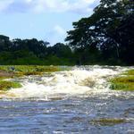 Die Tapawatra Falls am Suriname River in Boven Suriname