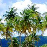 Reisebericht über unseren neuerlichen Besuch in Trinidad und Port of Spain