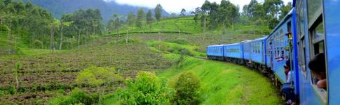 Erfahrungen und Informationen zur Fortbewegung per Zug und Bus durch Sri Lanka