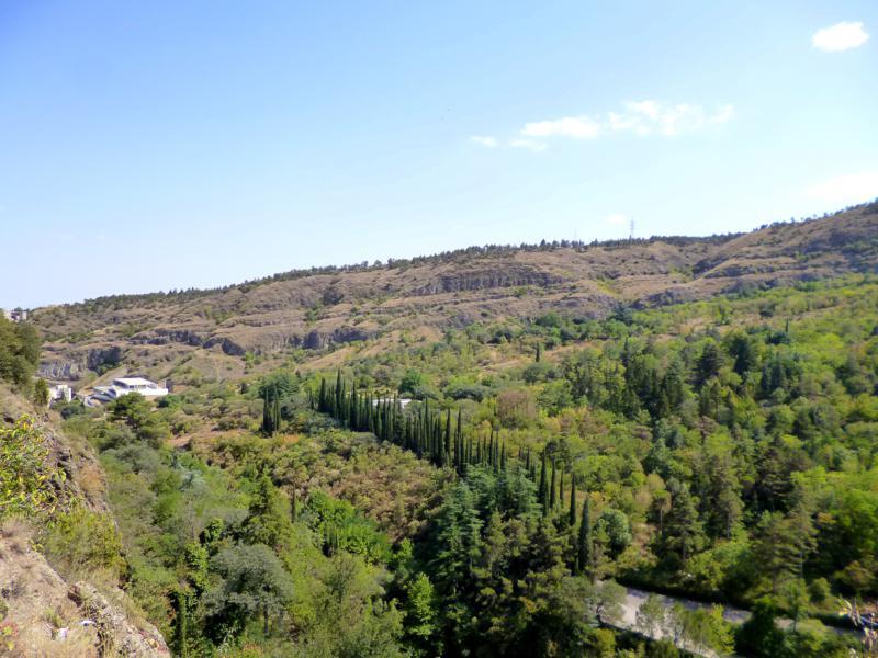 Viele Grünflächen gibt es im Hinterland von Tiflis