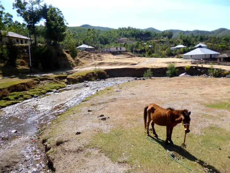 Das gemütlich Bergdorf Hatubuilico im Zentrum von Timor-Leste