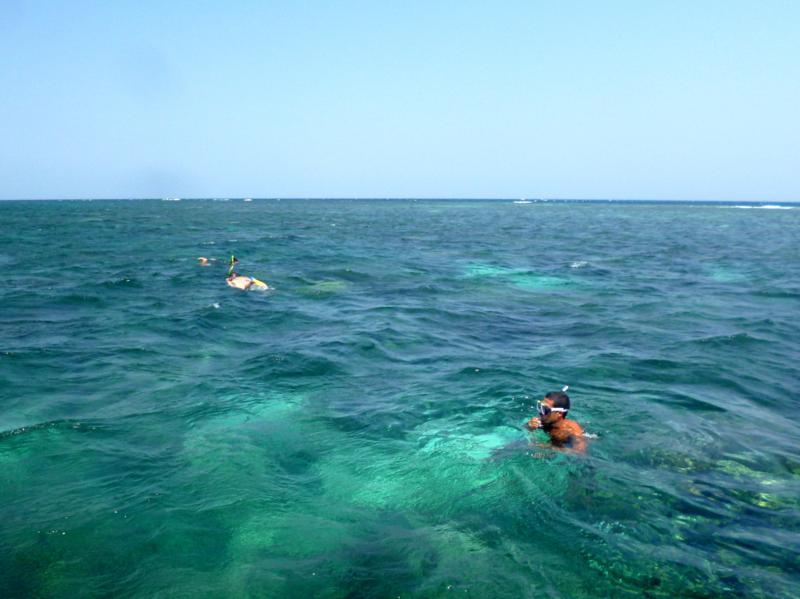 Schnorcheltrip auf Atauro Island - eine faszinierende Unterwasserwelt