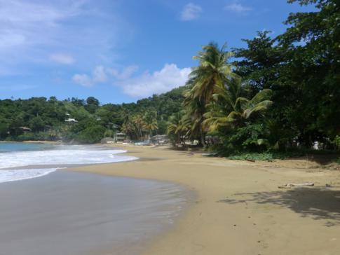 Die Bucht und der Strand von Castara - Karibik aus dem Bilderbuch