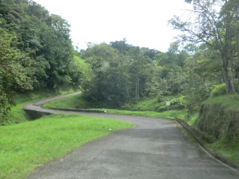 Die Roxborough-Parlatuvier Road im Norden von Tobago