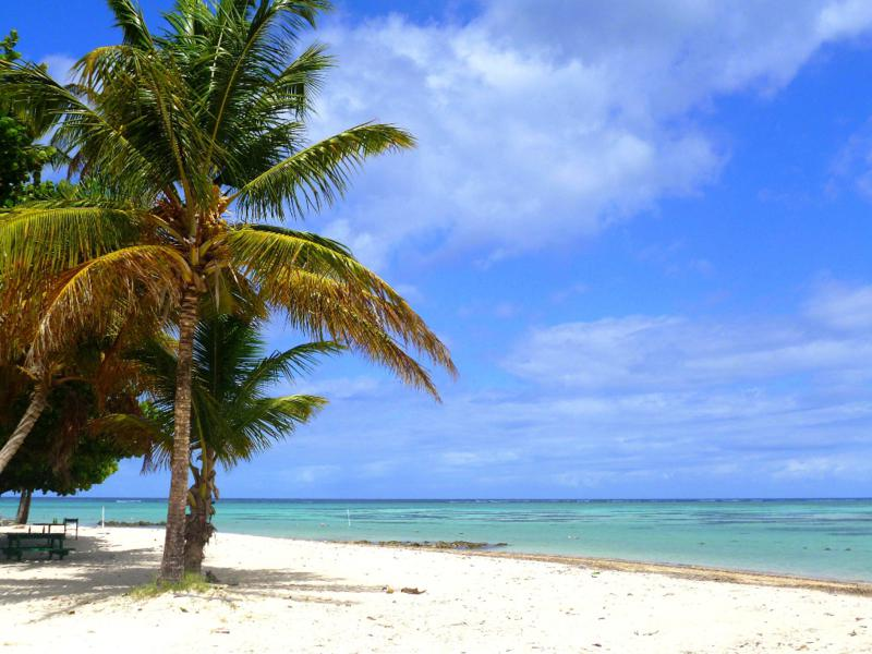 Der wunderschöne Pigeon Point Beach auf Tobago