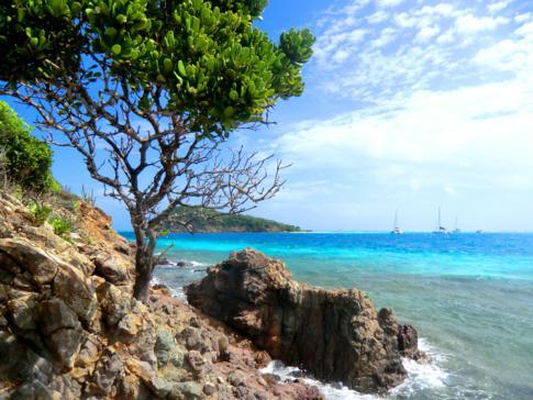 Kleiner Rundgang über Petit Bateau, eine der 5 Inseln der Tobago Cays
