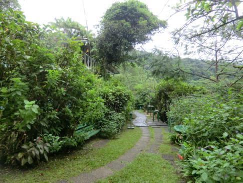 Das ASA Wright Nature Center im Herzen von Trinidad