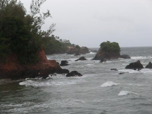 Die schroffe Atlantikküste bei Salybia