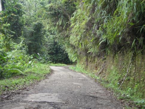 Die Blanchisseuse Road vom gleichnamigen Ort nach Arima