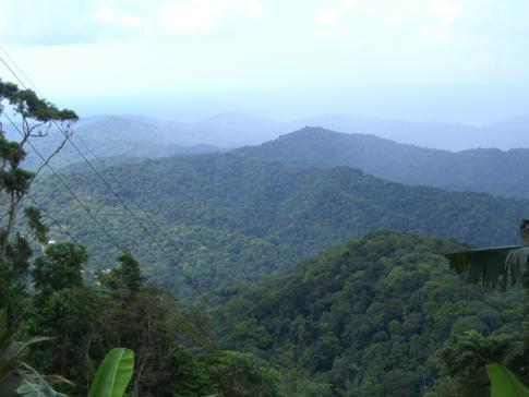 Blick über die gesamte Nordküstenkette von Trinidad
