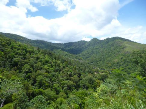 Ausblick vom Mount St. Benedict auf die Bergwelt Trinidads