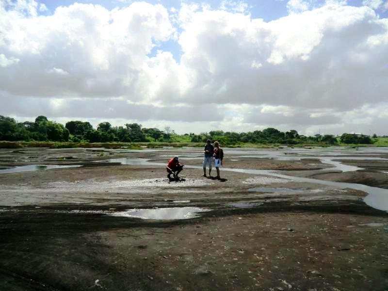 Blick auf den Pitch Lake während unseres zweiten Besuchs am Asphaltsee