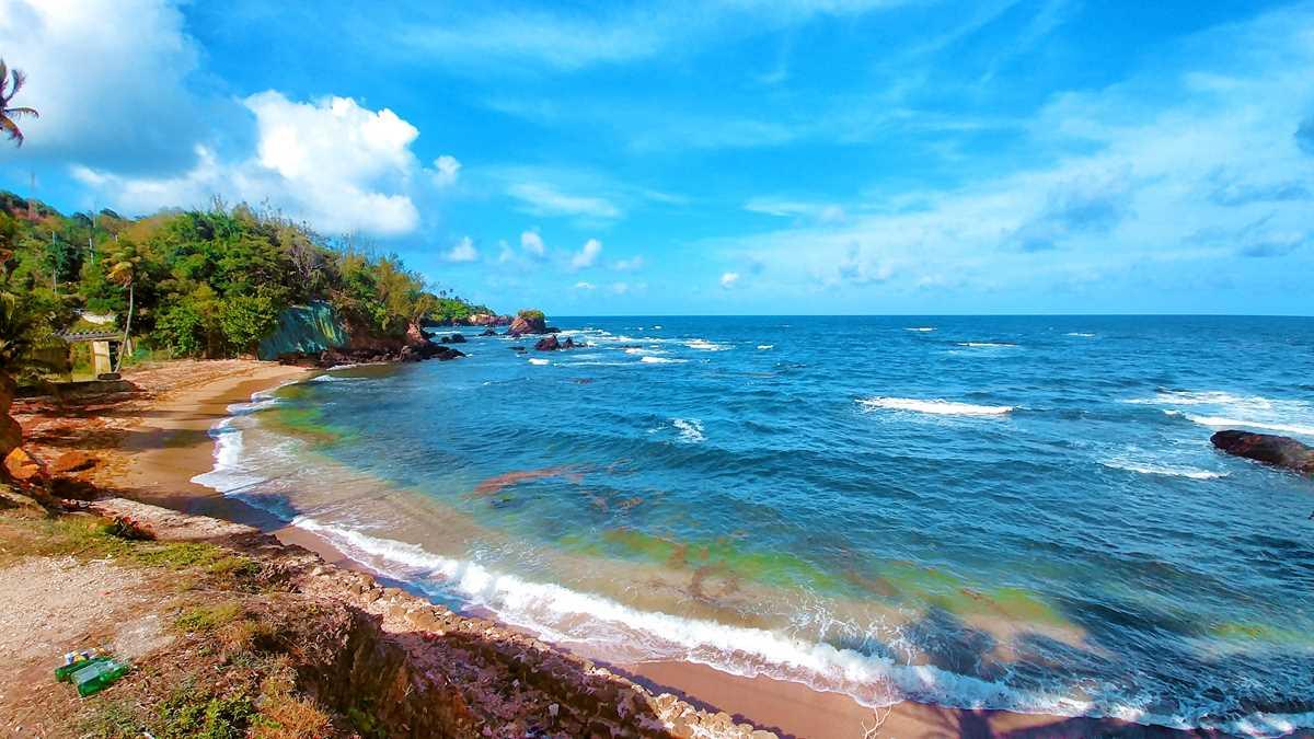 Lederschildkrötenbeobachtung in Trinidad
