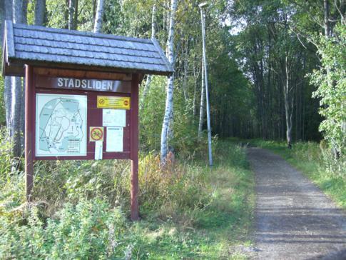 Der Stadtwald von Umea, der Stadsliden