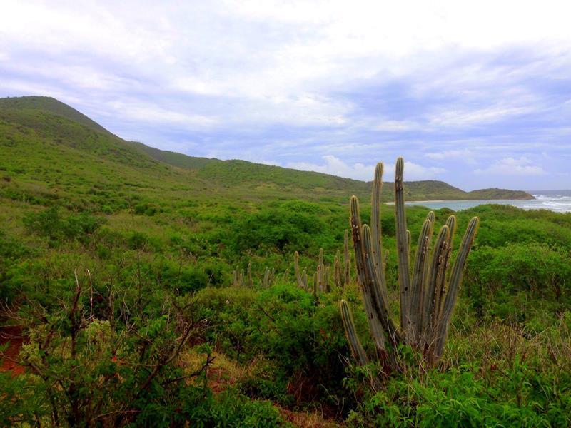 Wanderung von Point Udall entlang von Jack Bay und Isaac Bay