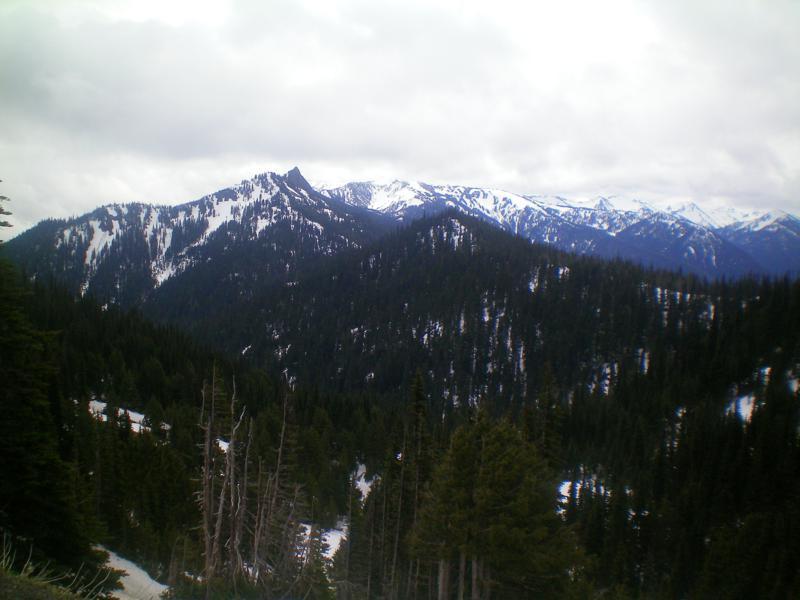 Blick von der Hurricane Ridge im Olympic National Park