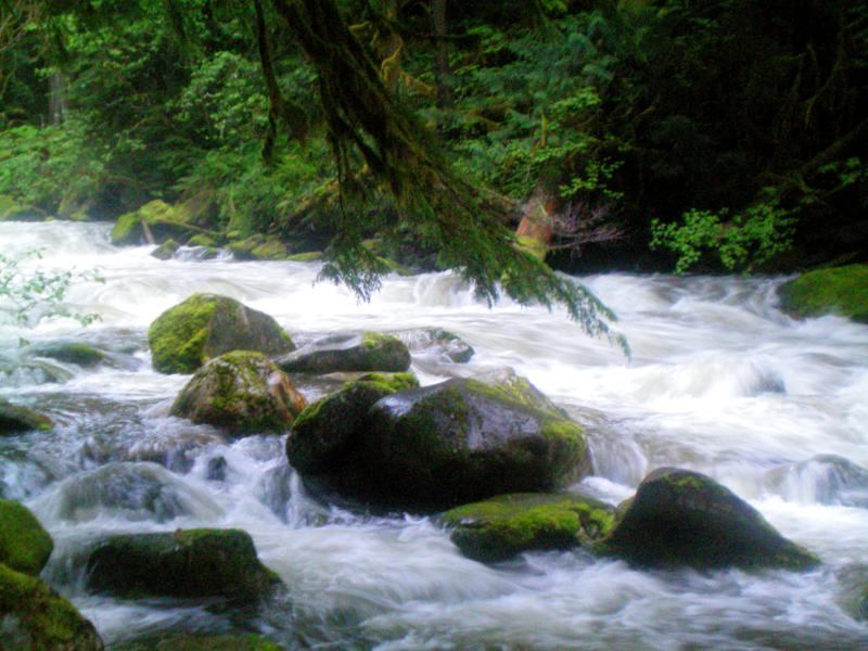 Fluss durch Newhalem im North Cascades National Park