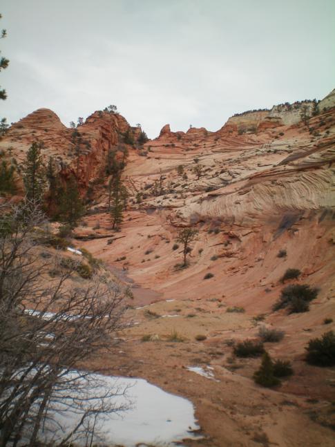 Der Zion Canyon ist einer der schönsten Nationalparks der USA