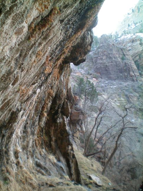 Der Wheeping Rock im Zion Canyon National Park